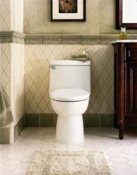 Champion One Piece Toilet